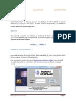GESTION DE STOCK - MANUAL DE USUARIO.pdf