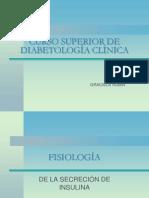 fisiologia_insulina_2012