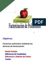 1.06 Factorización de Polinomios