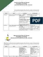 Programación Anual de la PJ (2013)