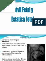 Movil Fetal