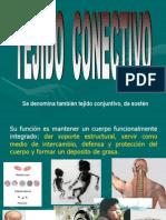 A. Tejido Conectivo General Final