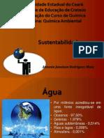 Sustentabilidade Apresentação Final