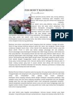 Prospek Bisnis Semut Rangrang