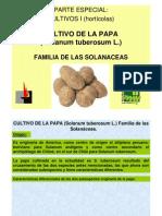 Papa 2013 Agro No Mia