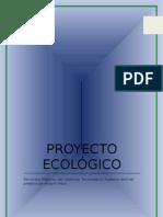 Proyecto ecológico acequia