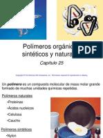 24. Polímeros (17d)
