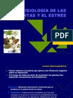 seminario10biblio1-2010.ppt
