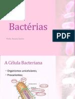 Aula 3ano Bacterias