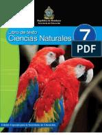 CCNN 7 Alumno.pdf