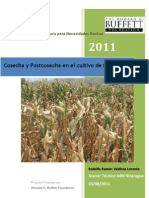 Cosecha y Postcosecha en El Cultivo de Maiz