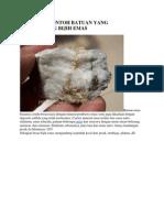 Beberapa Contoh Batuan Yang Mengandung Bijih Emas