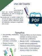 Odontología Preventiva y Salud Publica - importancia  y generalidades 2 (cepillado)