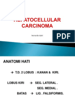 a12. Hepatoma (HCC)