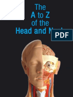 The A to Z of the Head and Neck