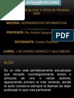 Blogs y Webs.pptx