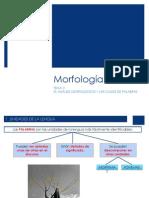 analisis morfológico y clase de palabras