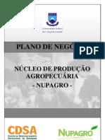 Plano Negocio Nupagro 2012