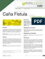 7. Caña Fístula (Cassia fistula L.)