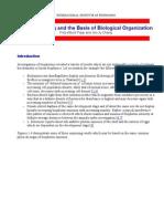 Photon Sucking and the Basis of Biological Organization - Summary.pdf