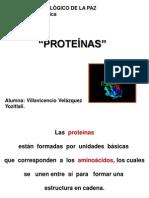 Proteinas Bien