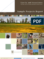 2011 ProjectReport Web