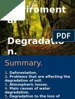 Enviromental Degradation.ana Araceli[1]