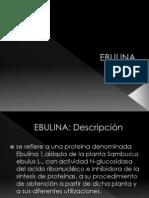 EBULINA.pptx