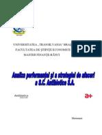 Analiza Performantei Si a Strategiei de Afaceri a SC Antibiotice SA