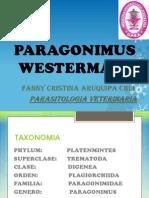 PARAGONIMUS WESTERMANI.pptx