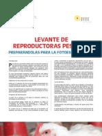3 Levante de reproductoras pesadas - preparándolas para la fotoestimulación.pdf