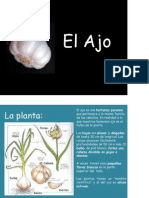 El Ajo.pdf