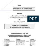 Traitement de La Turquoise Gems Nantes