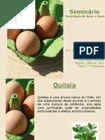 Seminário aves e ovos_final