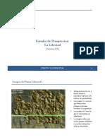 2012 10 Estudios de Prospeccion Libertad (1)