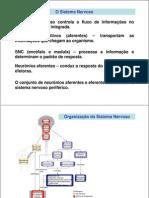 FisiologiaSistemaNervosoI.pdf