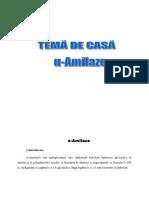 amilaze