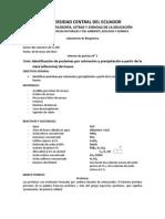 informe 02 inden. proteinas