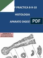 Usmp Practica 8 9 10 - Histologia 2013 - Aparato Digestivo