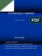 2.PATOLOGIA CORNEEI