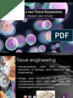 Stem Cells and TE