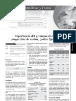 PRESUPUESTO FLEXIBLE.pdf