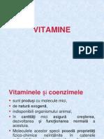 3 enzime coenzime vitamine