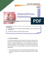 Manuales_Seminario Java_MANUAL de JAVA SEM 8 - 9