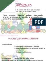 13_obesidiab_hipertens