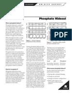 Phosphate Dozing