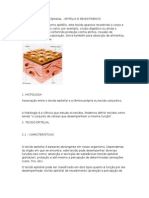 Documento Tecido Contutivo Word