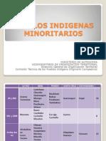 Pueblos Indigenas Minoritarios