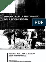 Hernandez Darwin_Dejuando Huellas