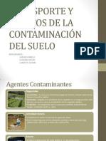 TRANSPORTE Y EFECTOS DE LA CONTAMINACIÓN DEL SUELO